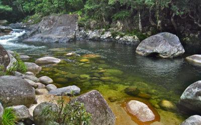013 Mossman Gorge
