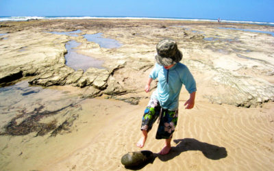 028 Exploring an Australian beach