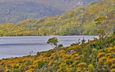 009 Tasmanian landscape