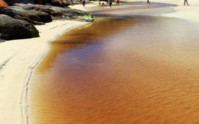011 Tidal river