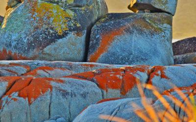 012 Tasmanian twilight