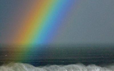 023 Rainbow wave
