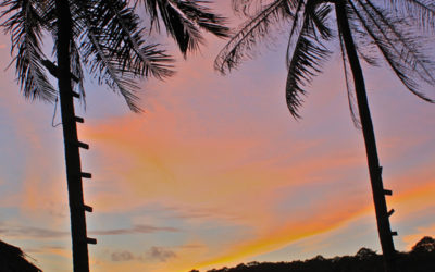 030 Holiday sunset